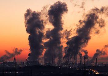 Vida, salud y seguridad en el trabajo: breves apuntes sobre el caso Fábrica de Fuegos v. Brasil