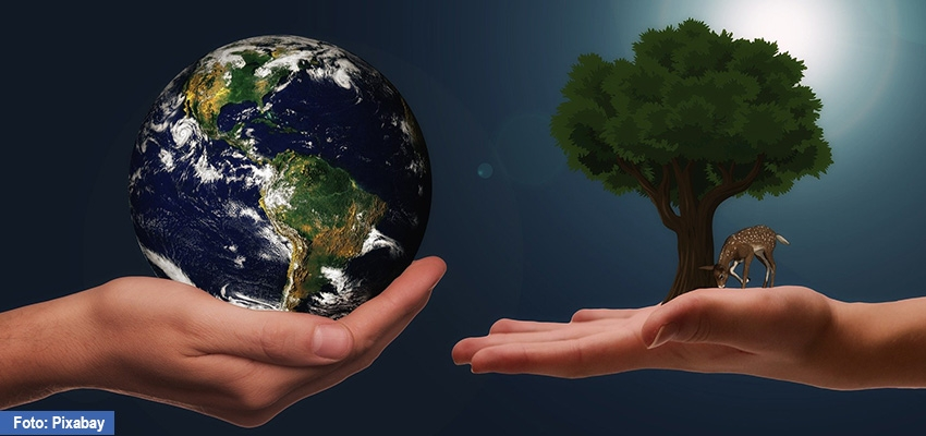 Estado de Derecho Ambiental y el Acuerdo de Escazú para América Latina y el Caribe